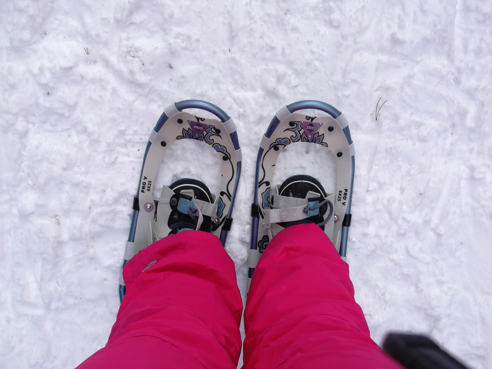 Snowshoeing Makes Your Bum Sore