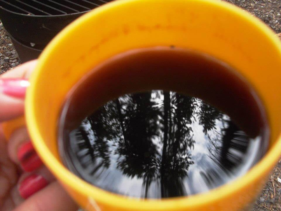 Reflection of the trees in my coffee