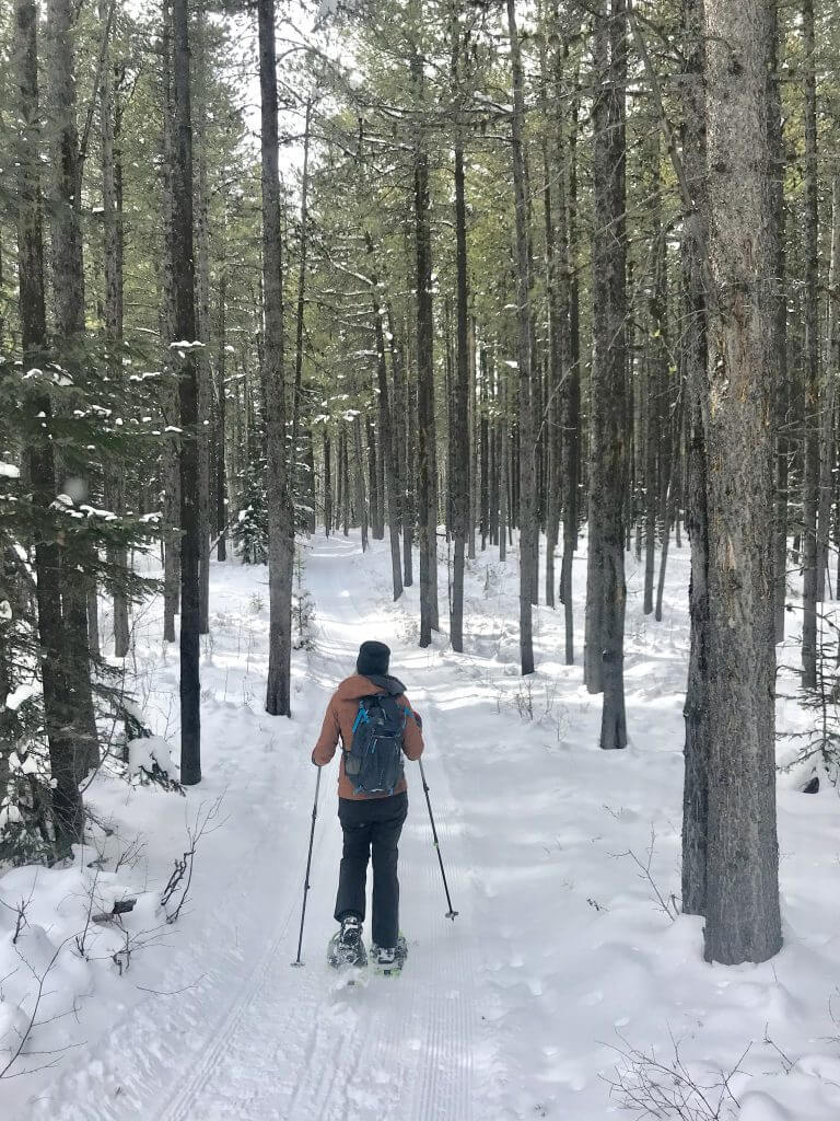 Snowshoeing on Syncline Trail