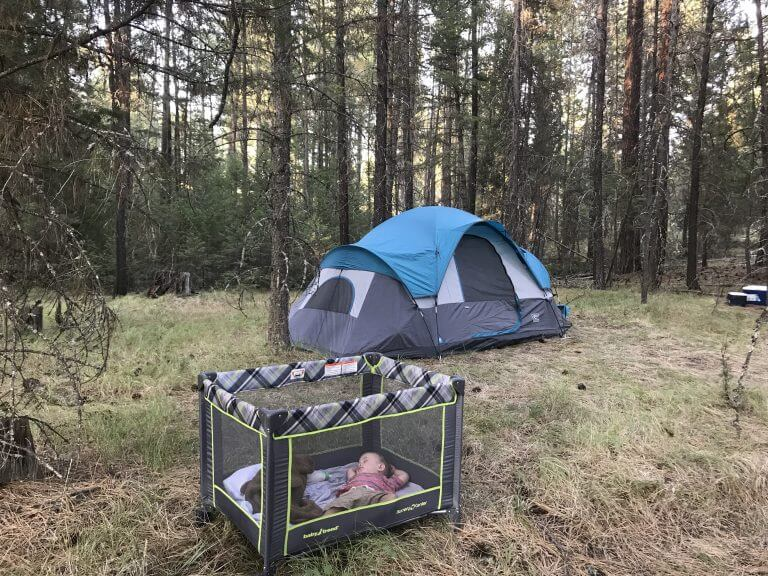 Camping at Surveyor's Lake